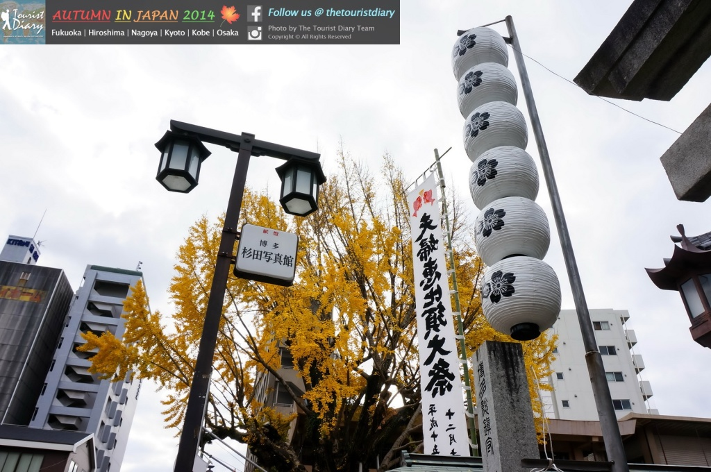 Kushida_Shrine_Blog_003