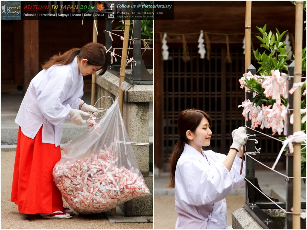 Kushida_Shrine_Blog_035