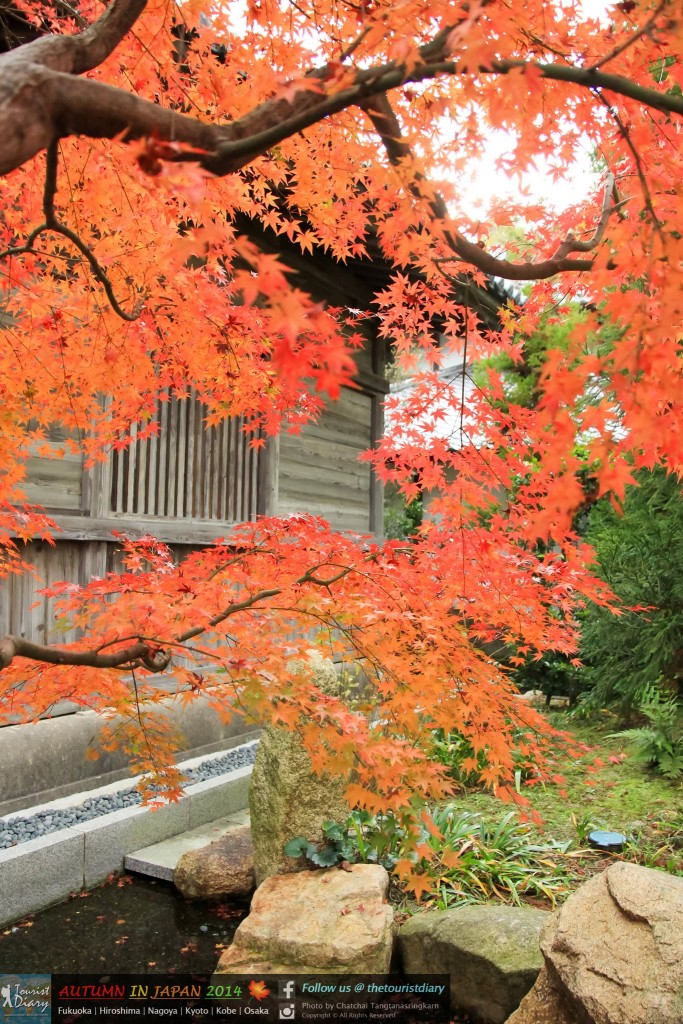 Dazaifu_Blog_048