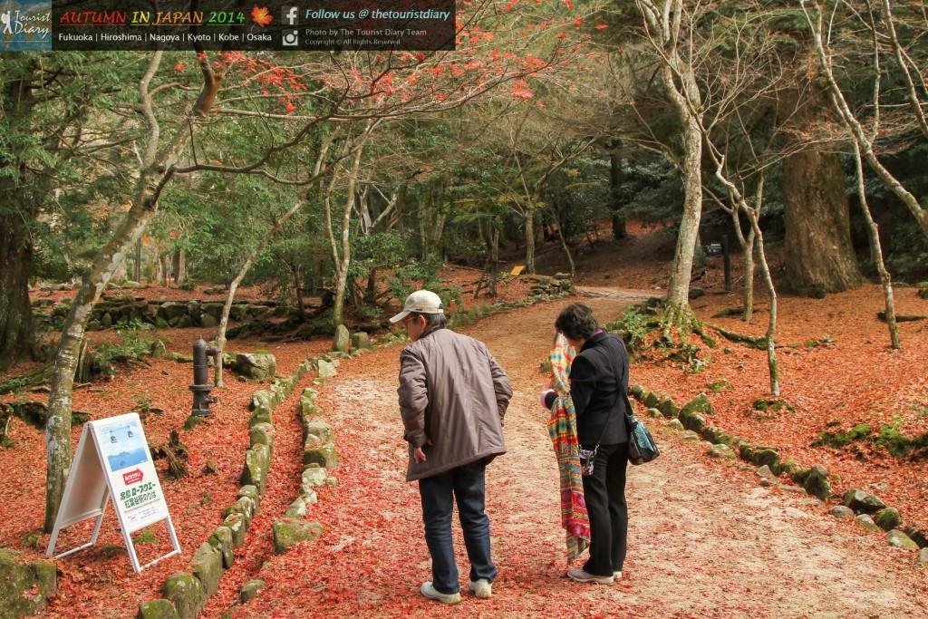 Miyajima - Blog - 084 - watermarked