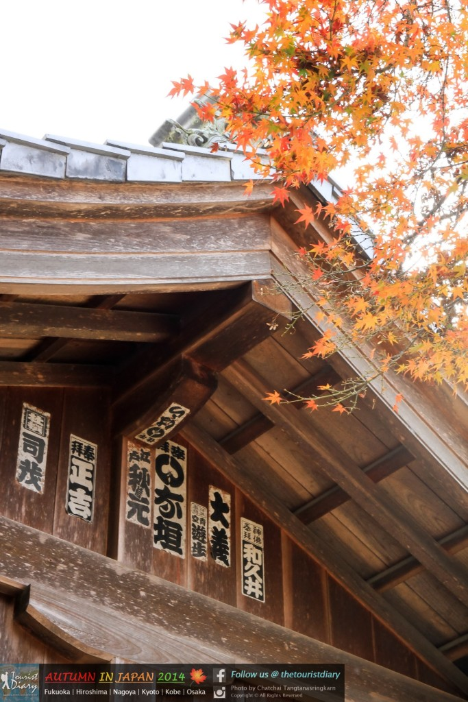 Miyajima - Blog - 100 - watermarked