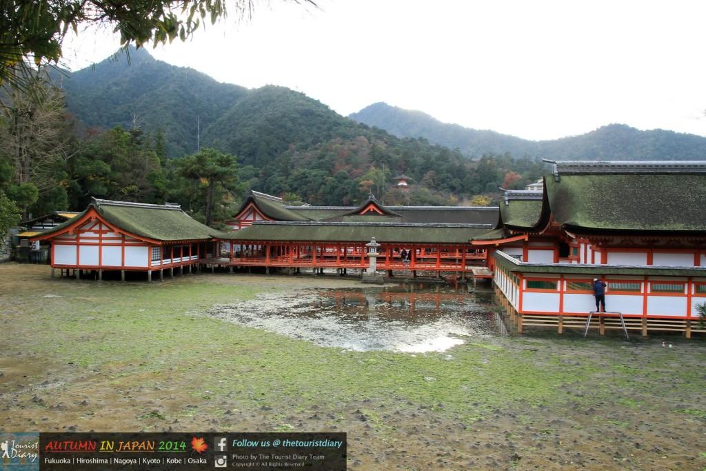 Miyajima - Blog - 112 - watermarked