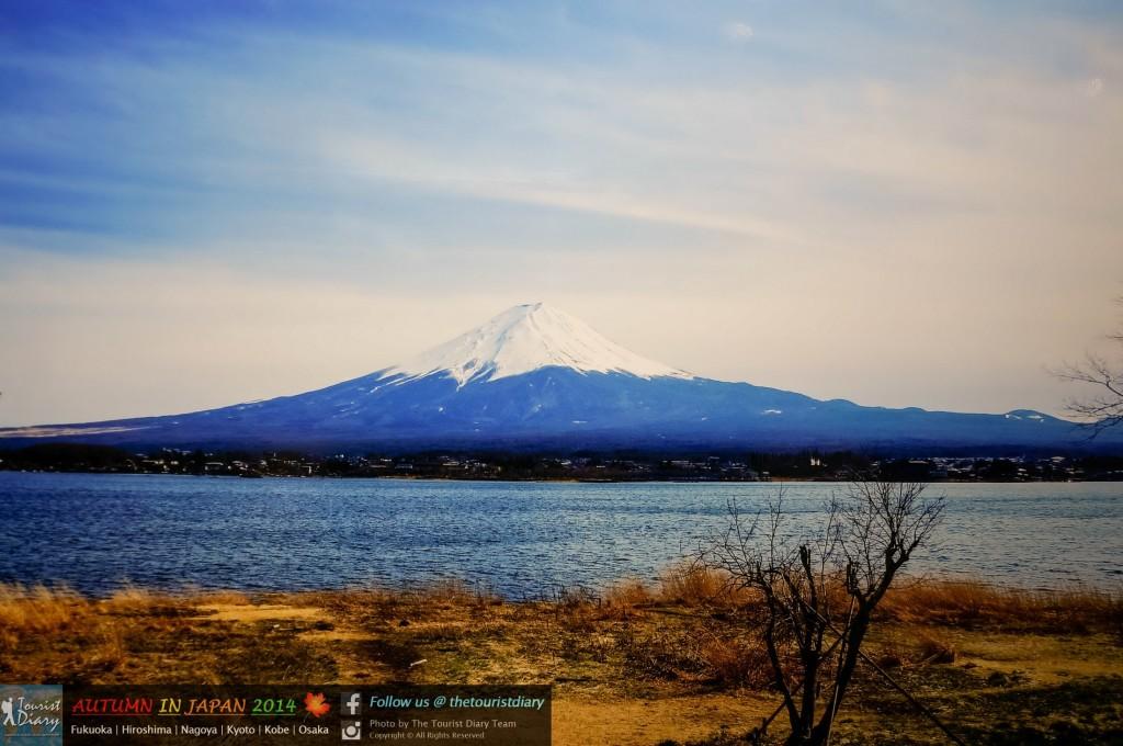 OASIS21_Blog_026