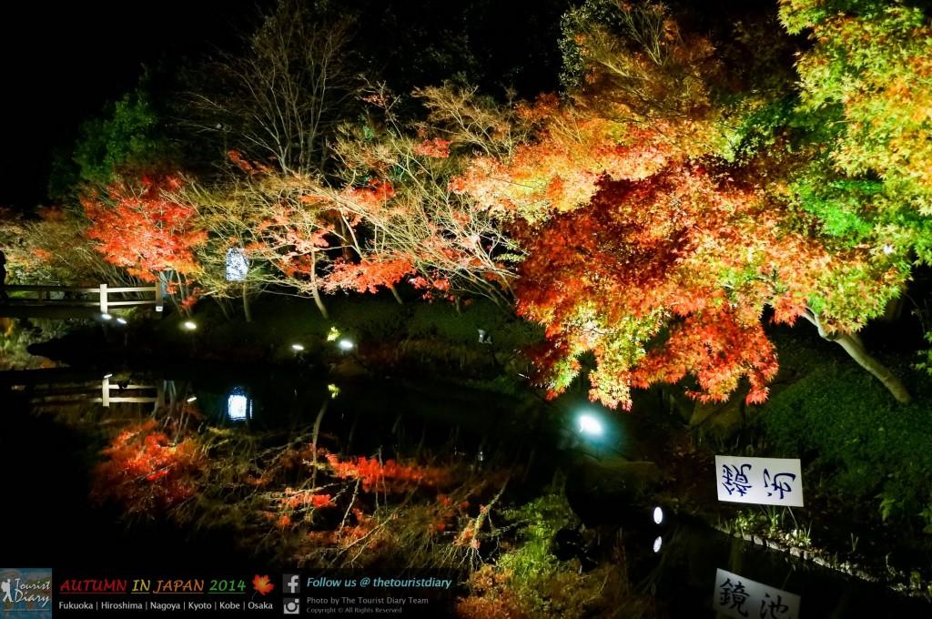 NabanaNoSato_Blog_033