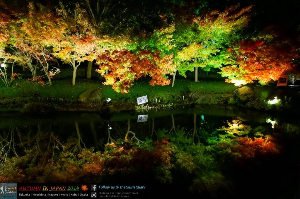 NabanaNoSato_Blog_034