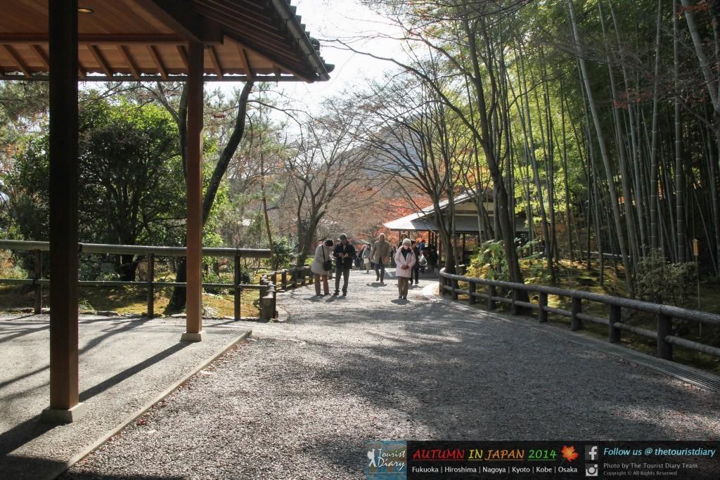Arashiyama_Blog_019