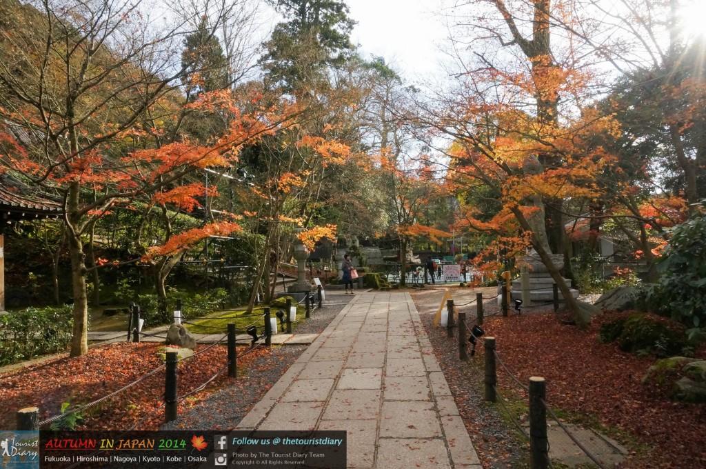 Eikando_Temple_Blog_022