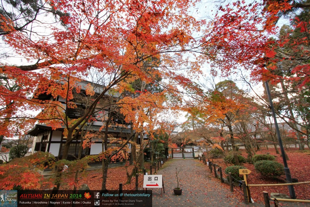 Eikando_Temple_Blog_039