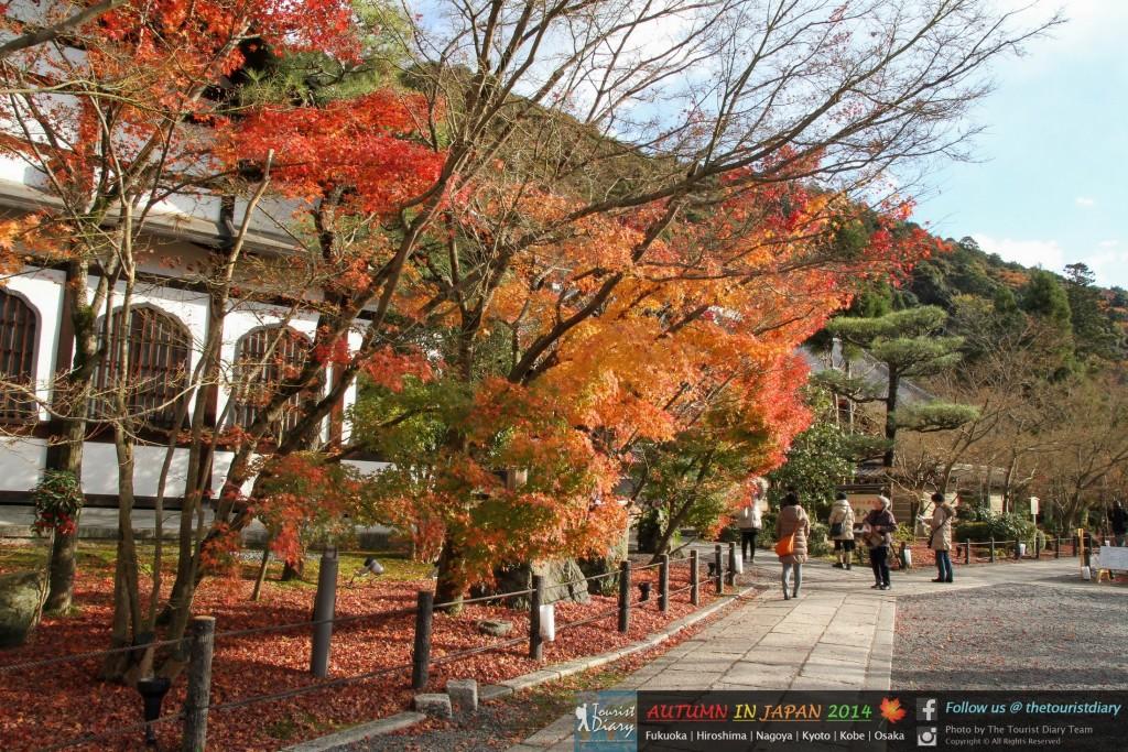 Eikando_Temple_Blog_046