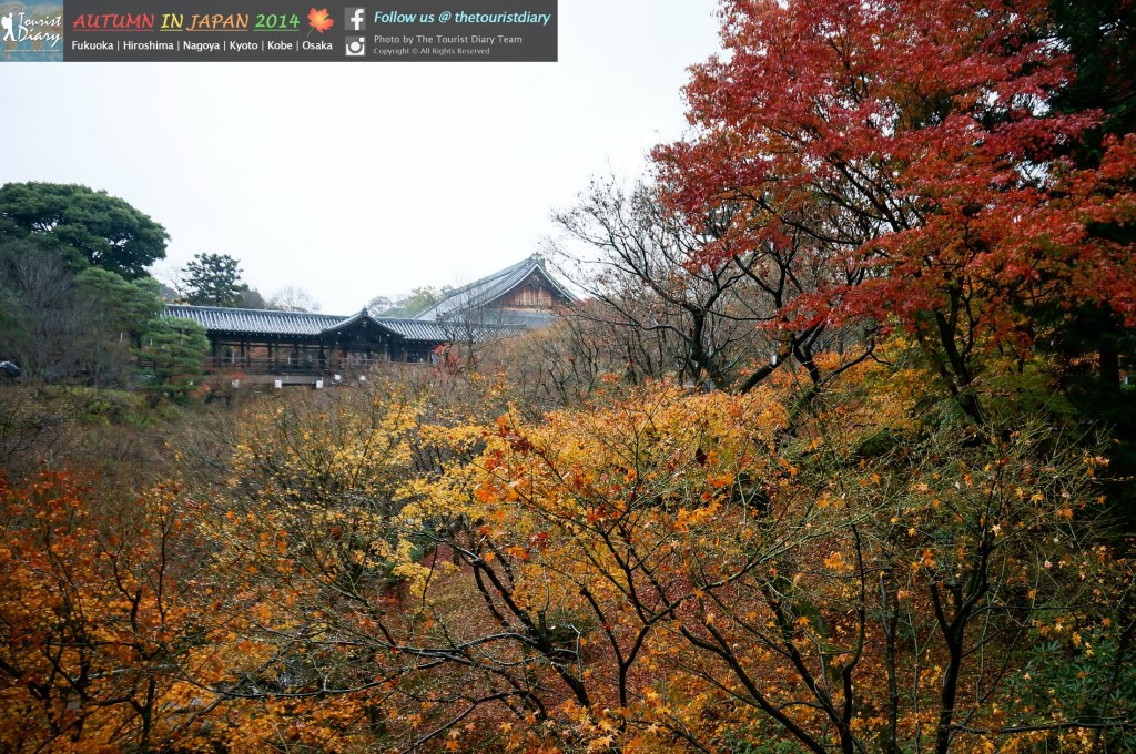 Tofukuji_Temple_Blog_003