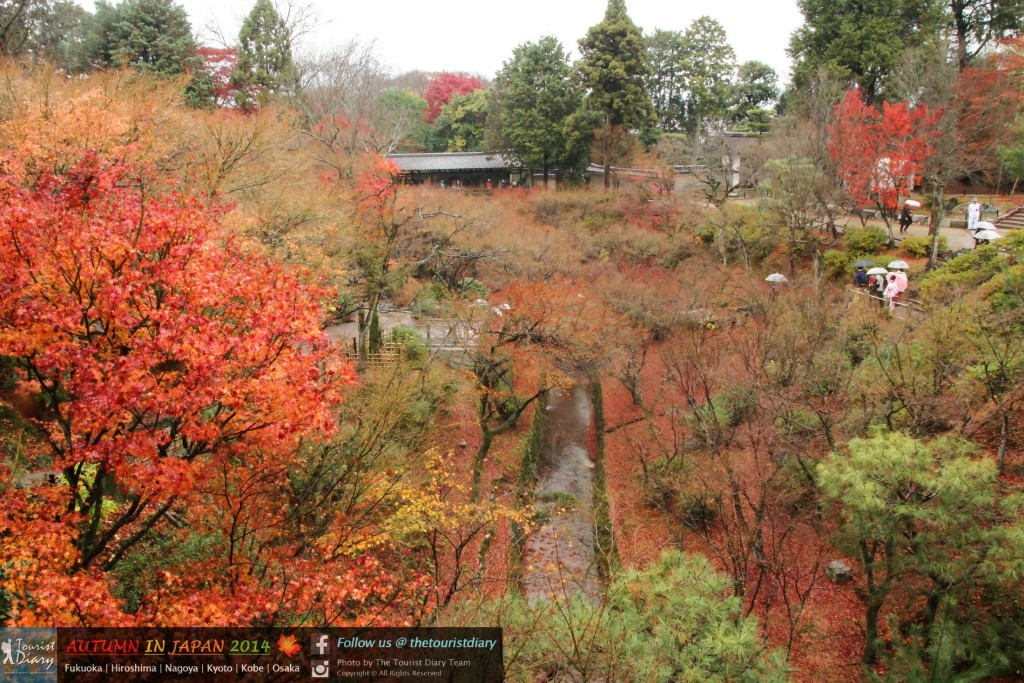 Tofukuji_Temple_Blog_027