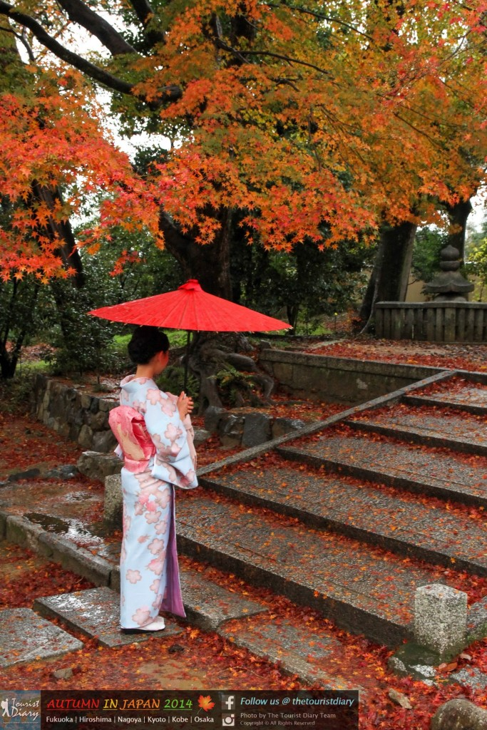 Tofukuji_Temple_Blog_030