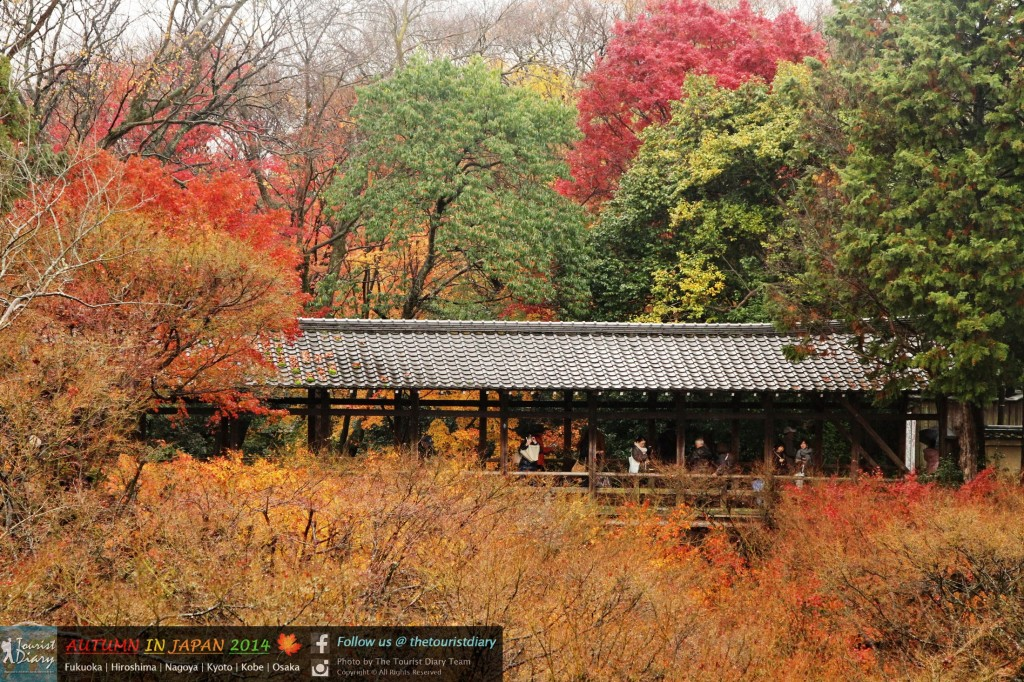 Tofukuji_Temple_Blog_036