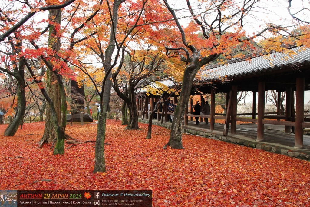 Tofukuji_Temple_Blog_037