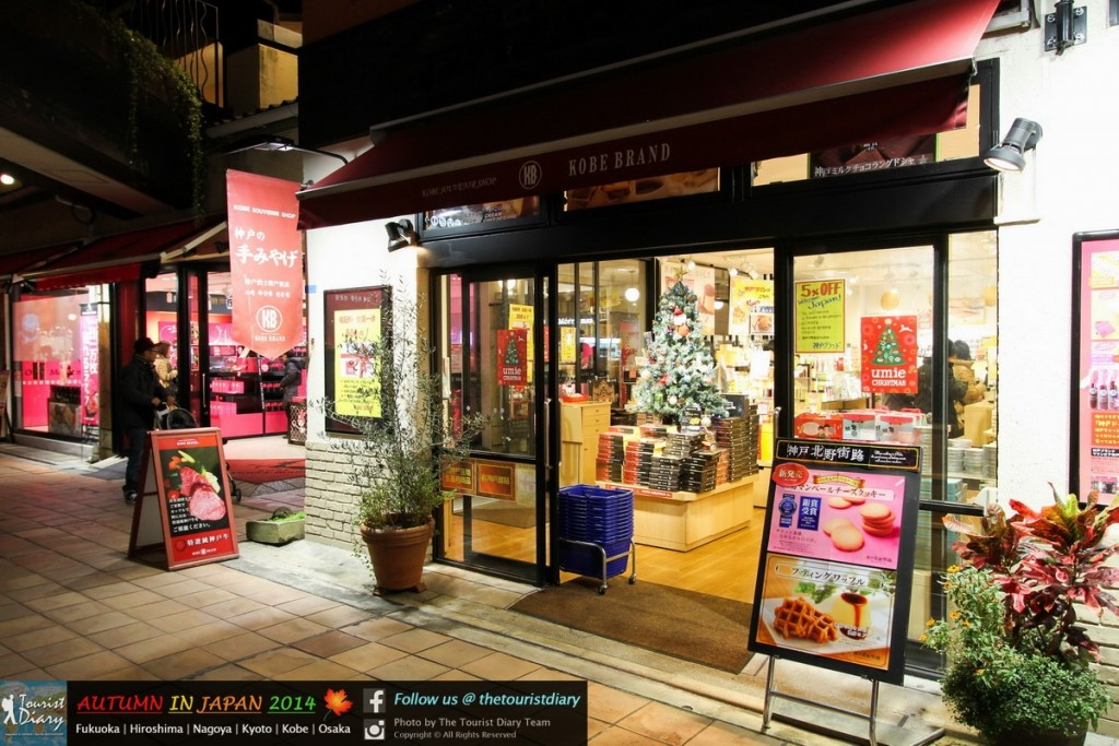 Umie Mosaic & Kobe Luminarie - Blog - 061